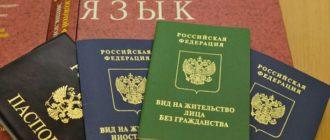 Паспорт РФ и ВНЖ