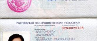Как выглядит ВНЖ в РФ